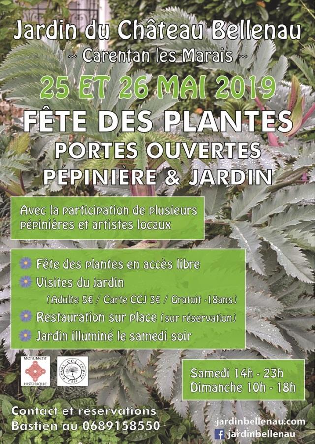 25 - 26 mai 2019-vert